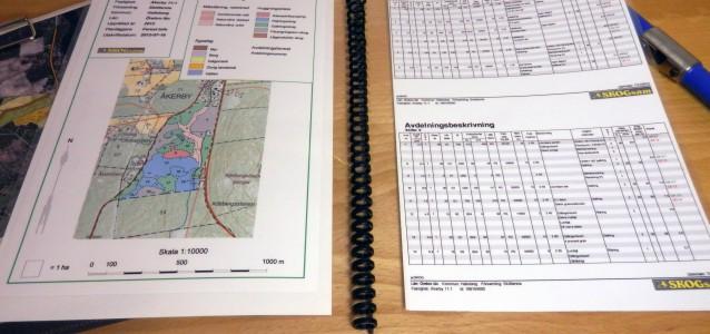 Skogsbruksplan