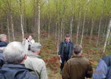 Det första fältbesöket, ursprungligen planterad björk som nu är dags att röja.